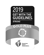 Stroke Gold Plus 2019